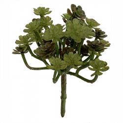 Suckulent, Echeveria på stjälk, 20cm, konstgjord växt