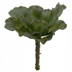 Suckulent, Echeveria på stjälk, 12cm, konstgjord växt