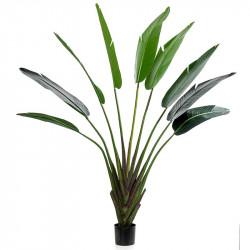 Strelitzia i kruka, 180cm, konstgjord växt