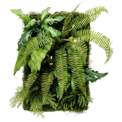 Väggpanel av mossa och växter, 60x40cm, konstgjord panel