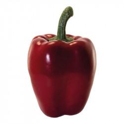 Paprika, röd, konstgjord mat