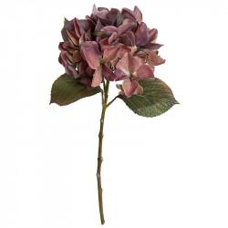Hortensia, urtvättad bordeaux, 47cm, konstgjord blomma