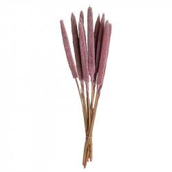 Torkad äkta kaveldun, svag rosa, 70 cm