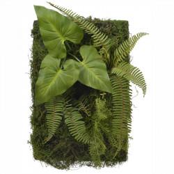 Väggpanel av mossa och växter, H60cm x B40cm, konstgjord vä xt