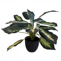 Kalateaväxten, 43 cm, konstgjord växt
