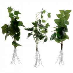 Murgröna växt med rot, 3 olika designer, konstgjord växt