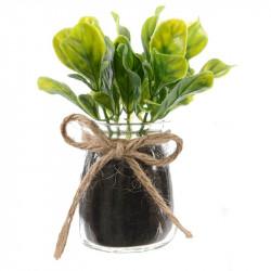 Ört i glas Basilika, 13cm, konstgjord växt