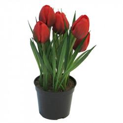 Tulpaner i kruka, 23 cm med 5 blommor Röd, konstgjord blomma