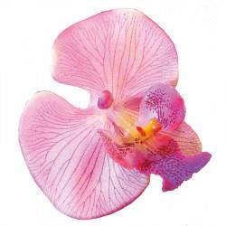 Orkidé på stjälk, 77 cm, konstgjord blomma