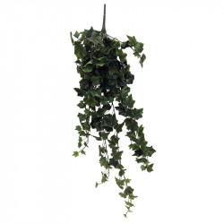 Häng-murgröna, 100 cm XL,...