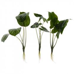 Grön växt m. rot/stora blad, 3 olika designer, konstgjordvä