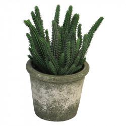 Kaktus i kruka, 26 cm, Konstgjord växt