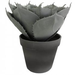 Suckulent i kruka, 23 cm, konstgjord växt