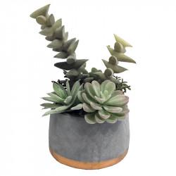 Suckulent i betongkruka m guldbotten 21.5 cm, konstgjordväxt växt