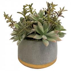 Suckulent i betongkruka med guldbotten, 17 cm, konstgjordvä xt