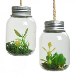 Miniväxter i små glas, 2 st./set, H 7 cm, konstgjord växt