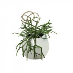 Hängande suckulent 16 cm i keramikkruka m upphängningkonstg jord växt