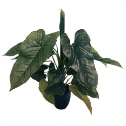 Philodendron i kruka, 57 cm, konstgjord växt