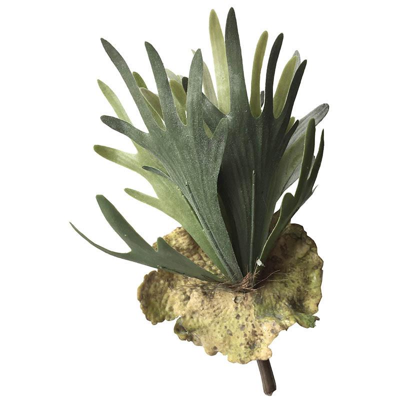 Älghornsblad (Platycerium), Konstgjord växt