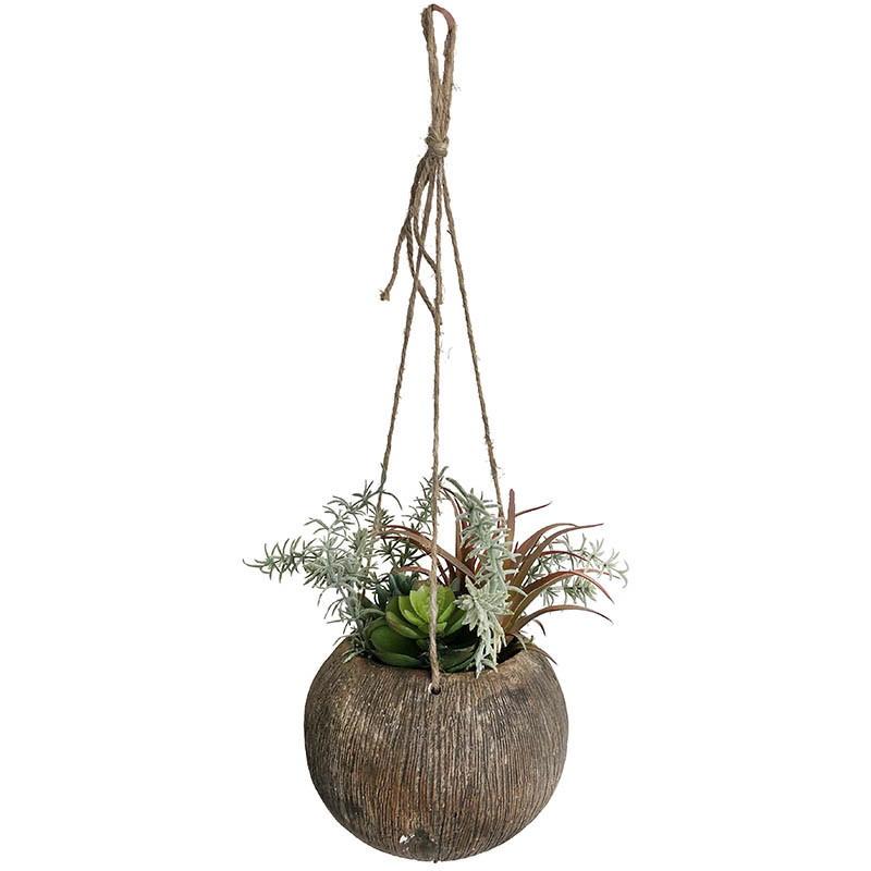 Suckulenter i hängkruka med snöre, 20 cm, konstgjord växt