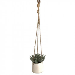 Hängande suckulent i vit kruka, Ø 14 H 13 cm,konstgjord växt konstgjord växt
