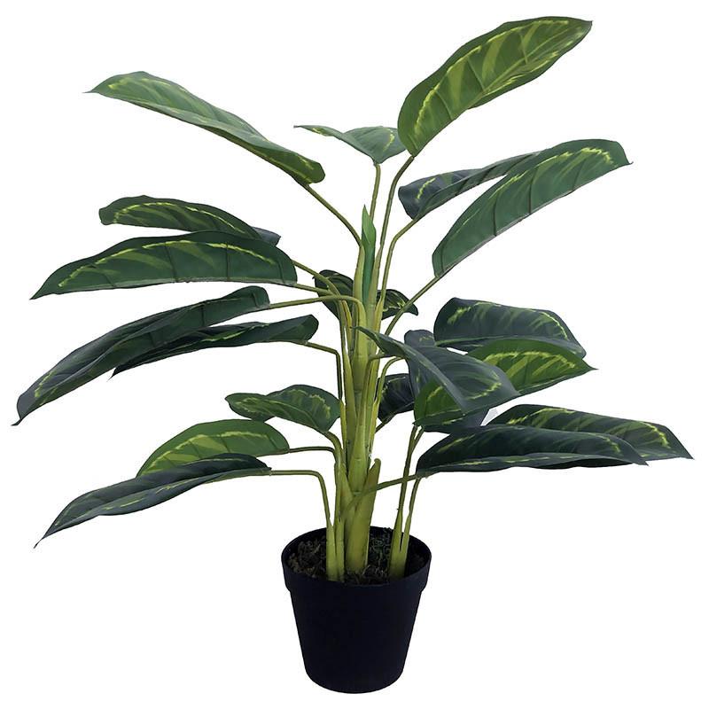 Kalatea-växt, 65 cm, konstgjord växt