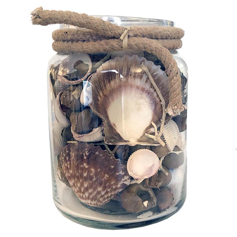Snäckskal och natur-dekoration i glas med ljusbrunt rep