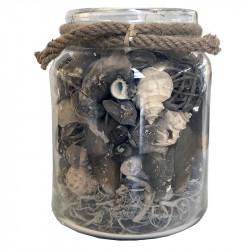 Snäckskal och natur-dekoration i glas med brunt rep