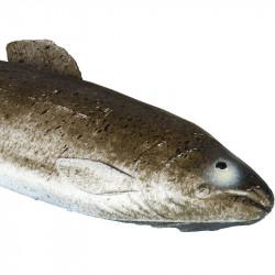 Fisk (Öring), konstgjort djur