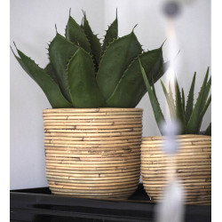 Växtkruka med plastfoder, H 24,5 cm