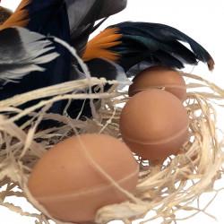 2 höns på bast med 3 ägg, svart-orange