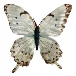 Fjärilar, Crème, 6 st. i box, konstgjorda fåglar