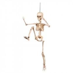Skelett med rörliga leder och fästanordning.