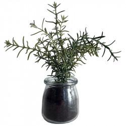 Kryddört Timjan, 20 cm i glaskruka, konstgjord växt