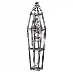 Skelett i bur, H:50cm
