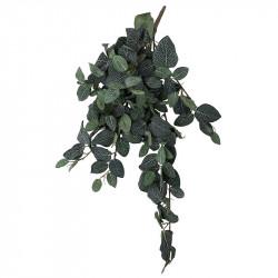 Fittonia hängande, grön/vit, 75 cm, konstgjord växt