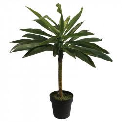 Dracena, grön, H:75cm, konstgjord växt