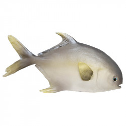 Tonfisk (fisk)
