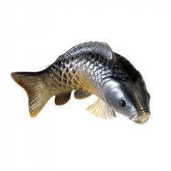 Karp (fisk)
