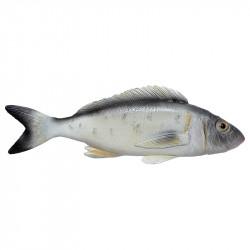 Brax, Fisk, grå/vit/gul, konstgjorda djur