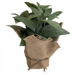 Mynta i jutepåse, 22cm, konstgjord växt