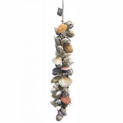 Strandsnäcksranka, vit, 80 cm