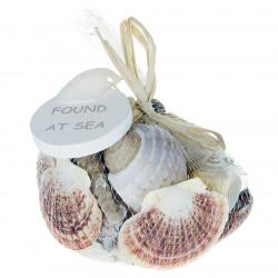 Strandsnäckor i nät, 1000 g, äkta snäckor