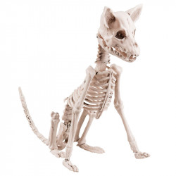 Sittande hund, skelett, H48cm