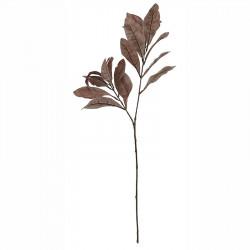 Kroton gren, brun, 72cm, konstgjord växt