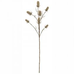 Vävarkarda, Dipsacus sativus, beige, 70cm, konstgjord planta