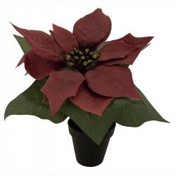 Julstjärna i kruka, röd, 18cm, konstgjord blomma