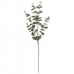 Eukalyptusgren, 5 stjälkar H:90 cm, konstgjord blomma