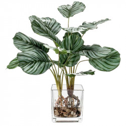 Calathea-växt i glaskruka, 45 cm, konstgjord växt