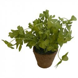 Turklöver i kruka, grön, 25 cm, konstgjord växt